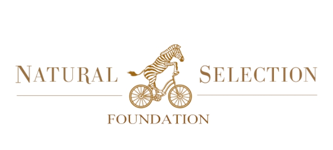 natural selection courage auction