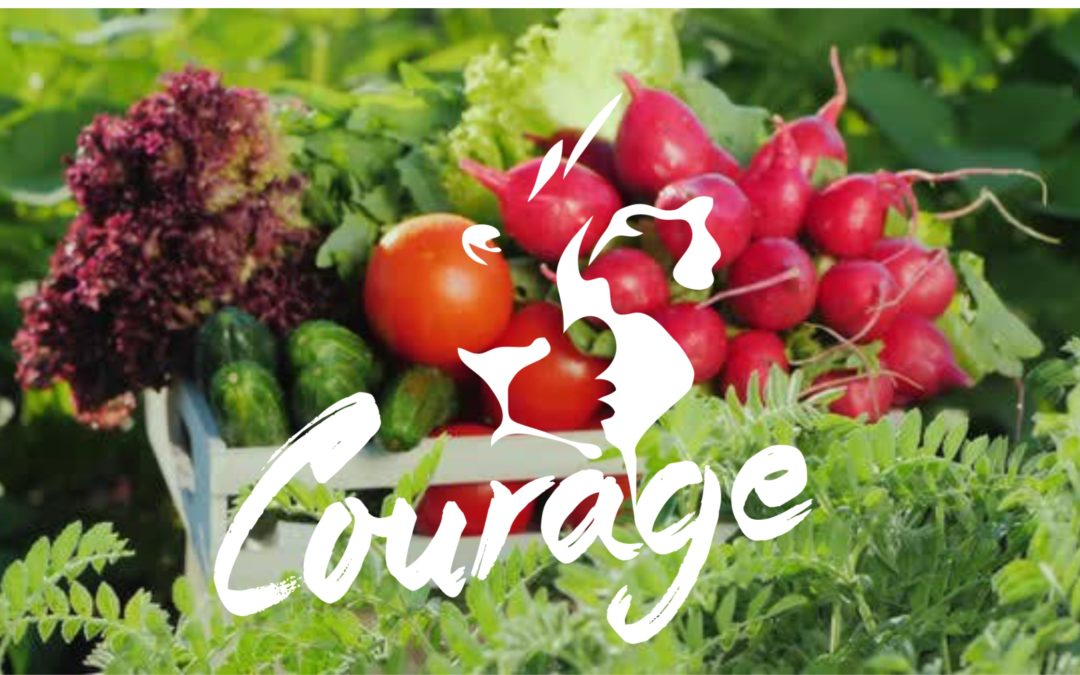 HELLO AGAIN FROM THE COURAGE INITIATIVE TEAM….and Welcome to LOVE in a Bowl – a long term food supply model to support the community